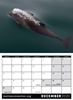 Picture of MC Large Spiral Booklet Calendar