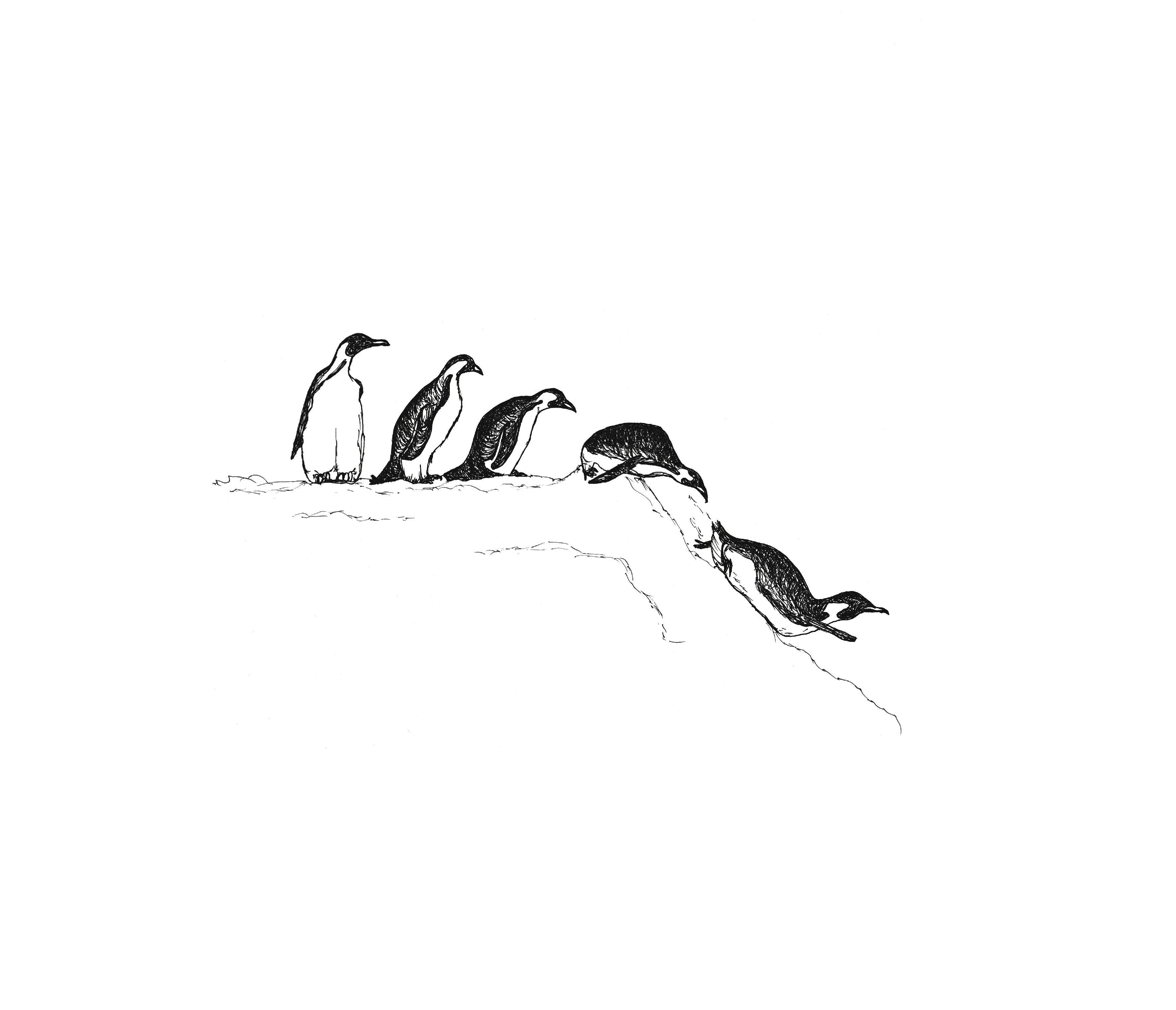 Picture of Sliding Penguins Christmas Cards