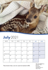 Picture of Little Foxes Calendar