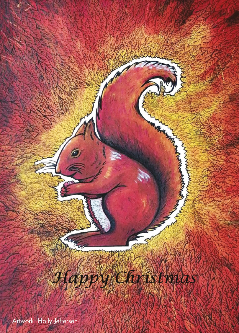 Picture of Squirrel Holy Jefferson Xmas Cards