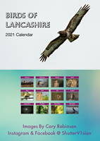 Picture of Portrait Desk Calendar - Birds of Lancashire