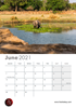 Picture of Mana Pools Calendar