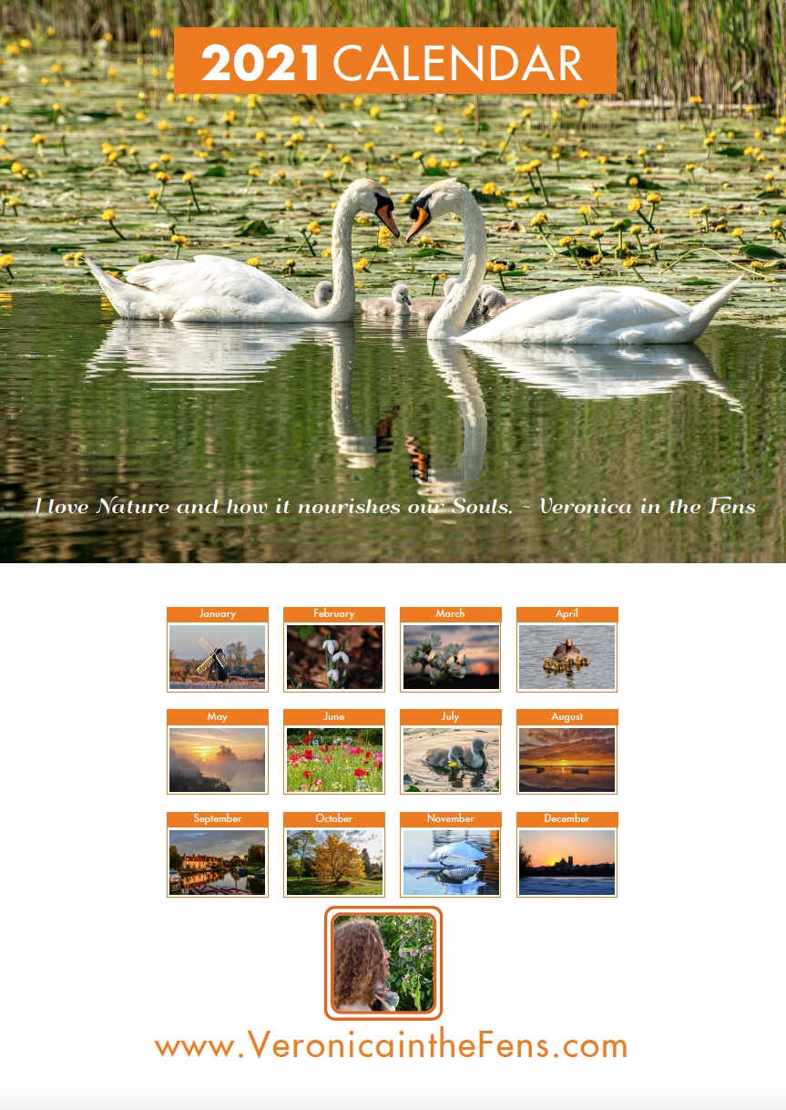 Picture of Fens Booklet Calendar
