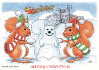 Picture of Squirrel Alan Rowe Xmas Cards