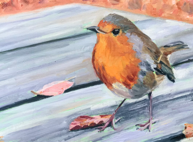 Picture of Hungry Robin Greetings Cards