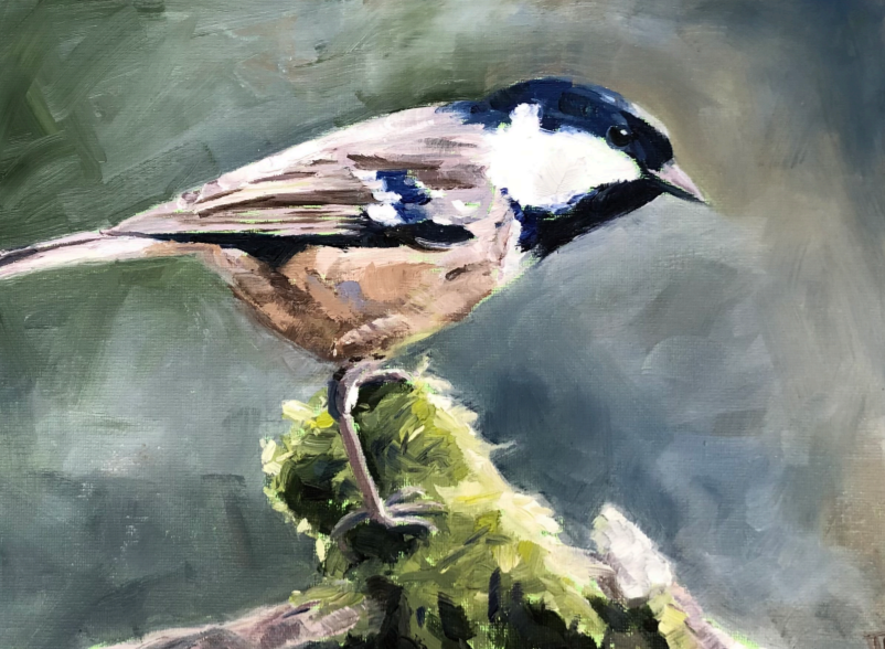 Picture of Coal Tit Greetings Cards