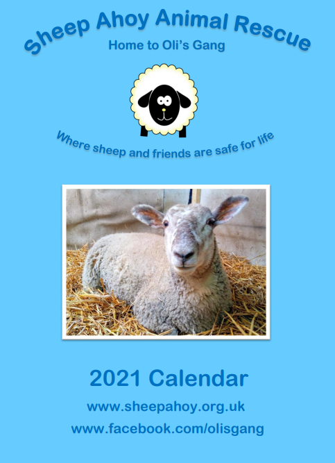 Picture of Sheep Ahoy Calendar