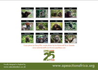 Picture of Ape Action Africa Calendar