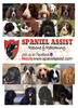Picture of Spaniel Assist Wall Calendar