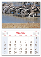 Picture of NET Cancer Awareness Desk Calendar 2020