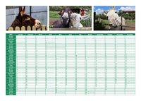 Picture of Caenhill Donkey Yearplanner