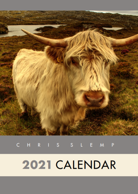 Picture of Cancer Research Fundraising Calendar