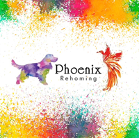 Picture for category Phoenix Rehoming