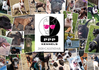 Picture of Large PPP Kennels Calendar