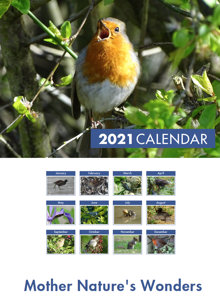 Picture of Wonders of Nature Calendar