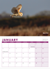 Picture of Birds of Lancashire Calendar