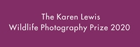 Picture for category Karen Lewis Photography Prize