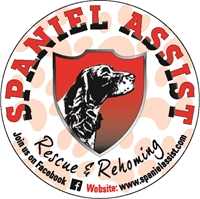 Picture for category Spaniel Assist Rescue and Rehoming