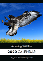 Picture of A3 Amazing Wildlife Calendar 2020
